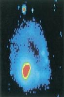 Imagen de la galaxia NGC985 obtenida con una cámara en el telescopio Isaac Newton del observatorio del Roque de los Muchachos en la Palma.
