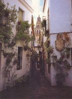 Las callejas de los barrios antiguos, como ésta de Córdoba, a menudo hacen las veces de espacios verdes y áreas estanciales convencionales.