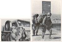 Fuerzas multinacionales destacadas en el Golfo.