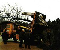 Abajo, transplante de árboles de gran tamaño.