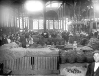 Mercado de la cebada.