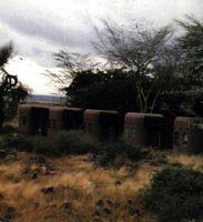 Los hoteles (lodges) de los parques de Kenya se integran en el paisaje, como una típica construcción local. P.N. Ambosel.